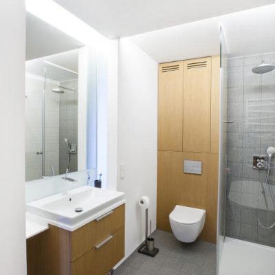 DS11 łazienka biel drewno popiel